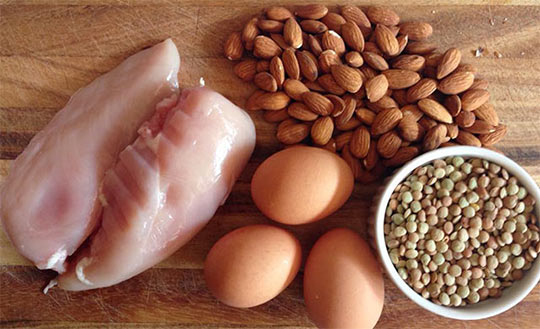 Protein rich Foods for losing fat